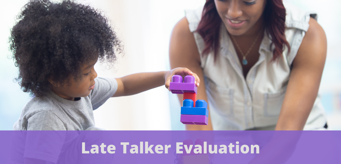 Late Talker Evaluation Overview