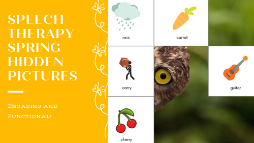speech therapy hidden pictures